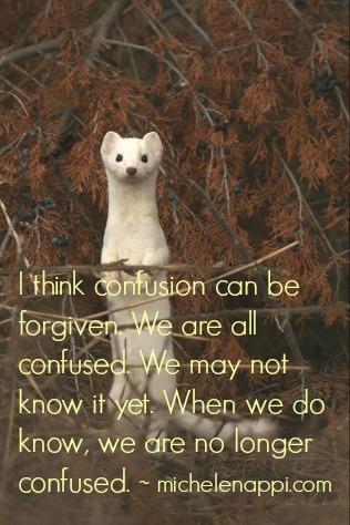 confusionforgiven